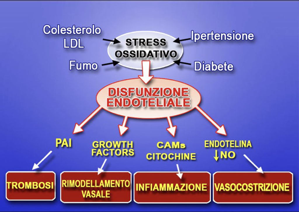 Test Stress Ossidativo